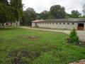 2012- (4)
