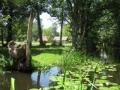 Widok od zakretu na rzeke i pole 1163